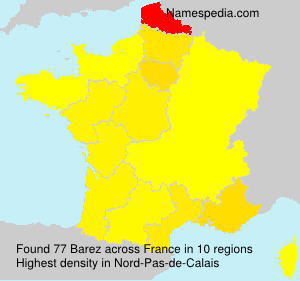 Surname Barez in France
