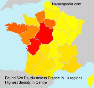Surname Baudu in France