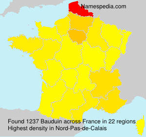 Surname Bauduin in France