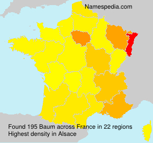 Surname Baum in France