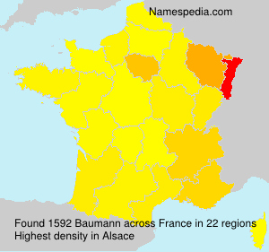 Surname Baumann in France