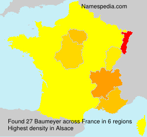 Surname Baumeyer in France