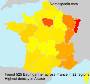 Surname Baumgartner in France