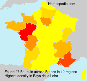 Surname Bauquin in France