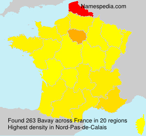 Surname Bavay in France