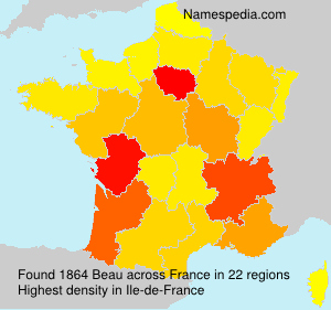 Surname Beau in France