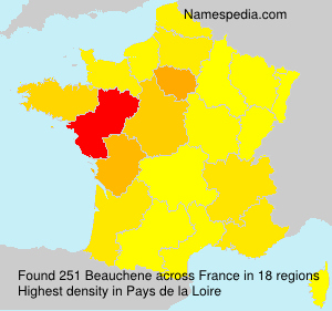 Surname Beauchene in France