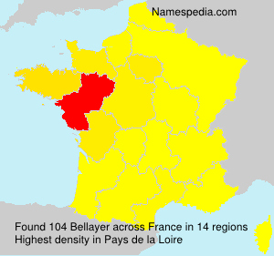 Surname Bellayer in France