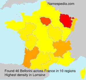 Surname Bellorini in France