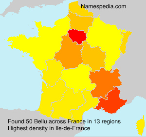 Surname Bellu in France