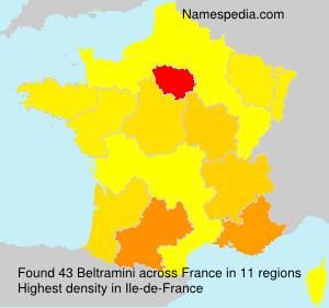 Familiennamen Beltramini - France