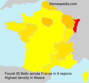 Surname Beltz in France