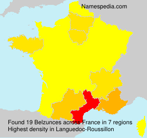 Surname Belzunces in France
