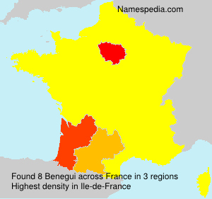 Surname Benegui in France