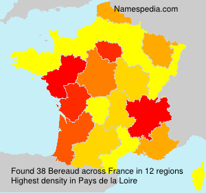 Surname Bereaud in France