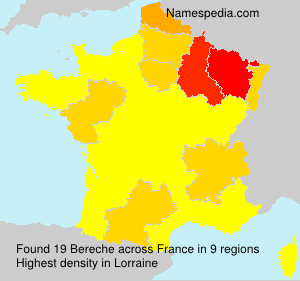 Surname Bereche in France