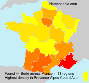 Surname Berle in France