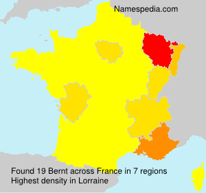 Surname Bernt in France