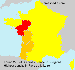 Surname Betus in France