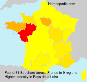 Surname Beuchard in France