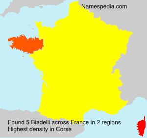 Surname Biadelli in France