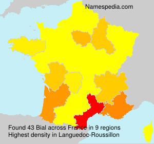 Surname Bial in France