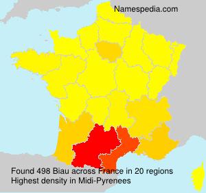 Surname Biau in France