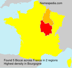 Surname Biccai in France