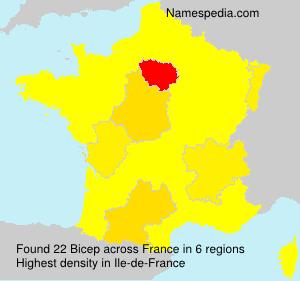 Surname Bicep in France