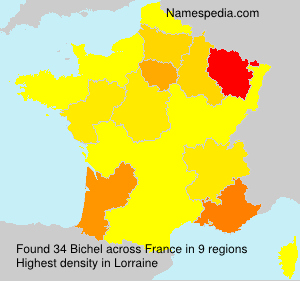 Surname Bichel in France