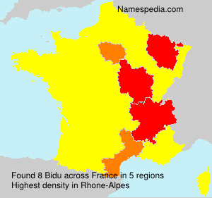 Surname Bidu in France