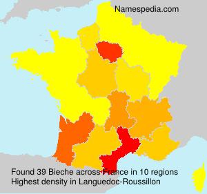 Familiennamen Bieche - France