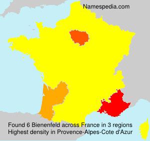 Surname Bienenfeld in France