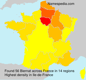 Surname Biernat in France