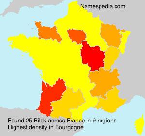 Familiennamen Bilek - France