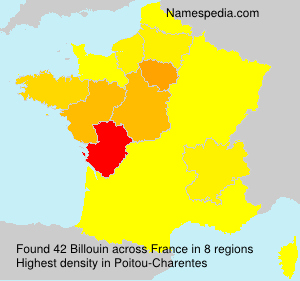 Surname Billouin in France