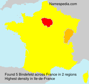 Surname Bindefeld in France