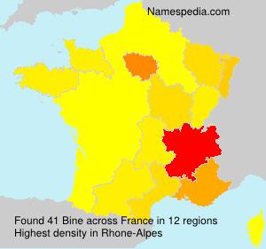 Surname Bine in France