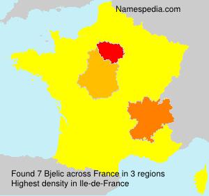 Surname Bjelic in France