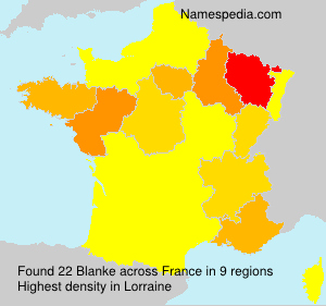 Surname Blanke in France