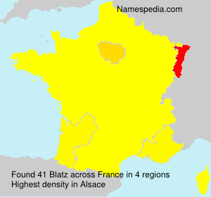 Surname Blatz in France