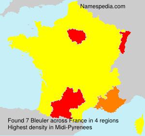 Surname Bleuler in France