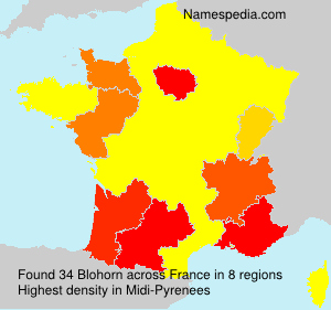 Surname Blohorn in France