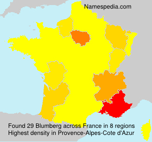Surname Blumberg in France