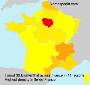 Familiennamen Blumenthal - France