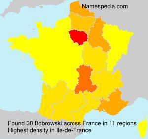 Surname Bobrowski in France