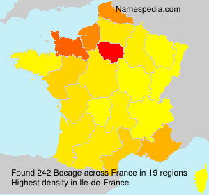 Surname Bocage in France