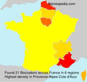Surname Boccadoro in France