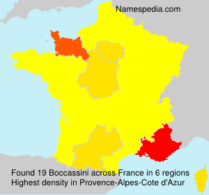 Surname Boccassini in France