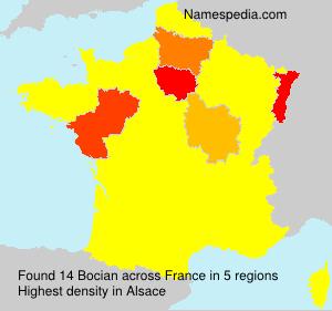 Surname Bocian in France